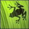 Аватар для A.Hagen
